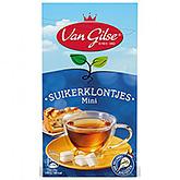 Van Gilse Cubes de sucre mini 500g