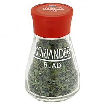 Verstegen Coriander leaf 9g