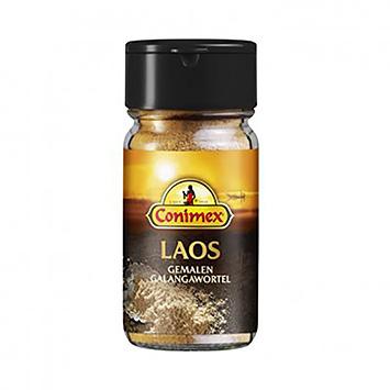 Conimex Laos gemahlene Galangawurzel 20g