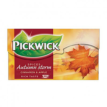 Pickwick Spices autumn storm 20 bags 40g